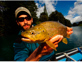 The-Brown-Trout-of-Patagonia2